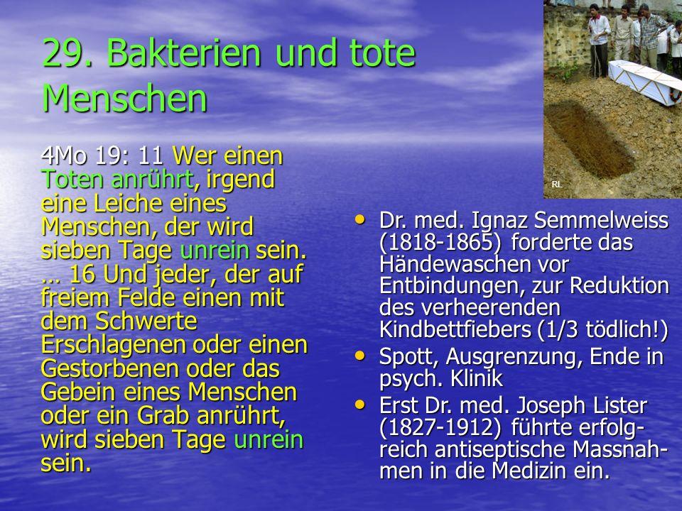 29. Bakterien und tote Menschen