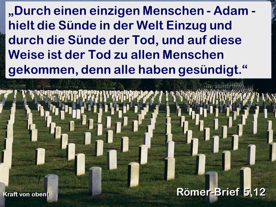 """""""Durch einen einzigen Menschen - Adam - hielt die Sünde in der Welt Einzug und durch die Sünde der Tod, und auf diese Weise ist der Tod zu allen Menschen gekommen, denn alle haben gesündigt."""
