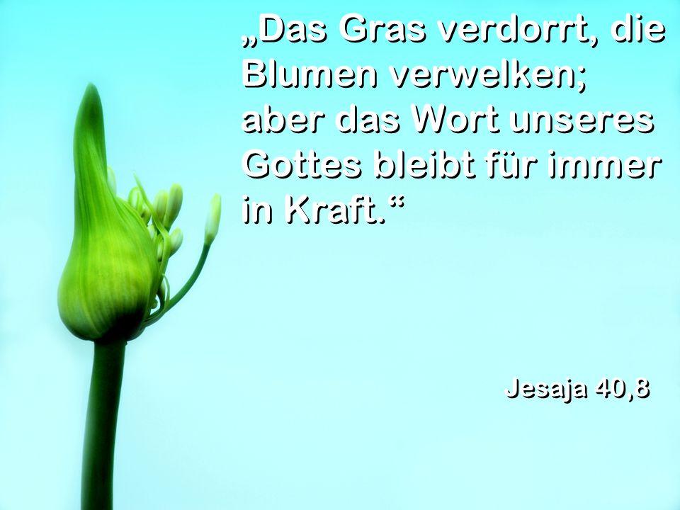 """""""Das Gras verdorrt, die Blumen verwelken; aber das Wort unseres Gottes bleibt für immer in Kraft."""