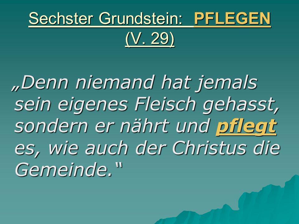 Sechster Grundstein: PFLEGEN (V. 29)