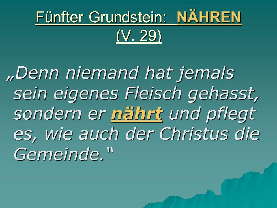 Fünfter Grundstein: NÄHREN (V. 29)