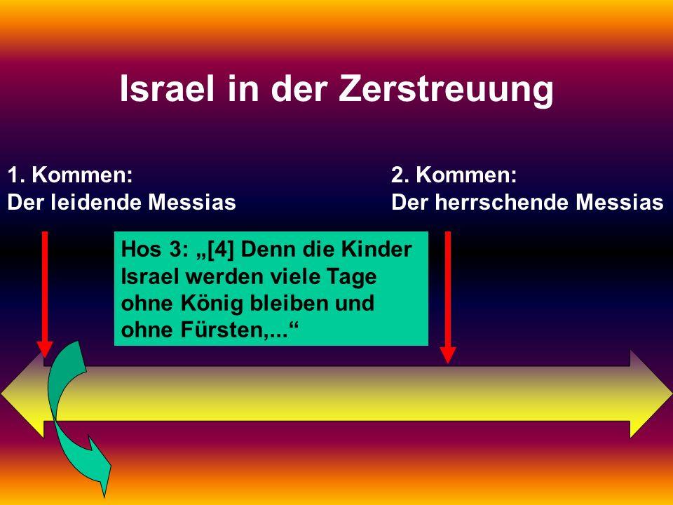 Israel in der Zerstreuung