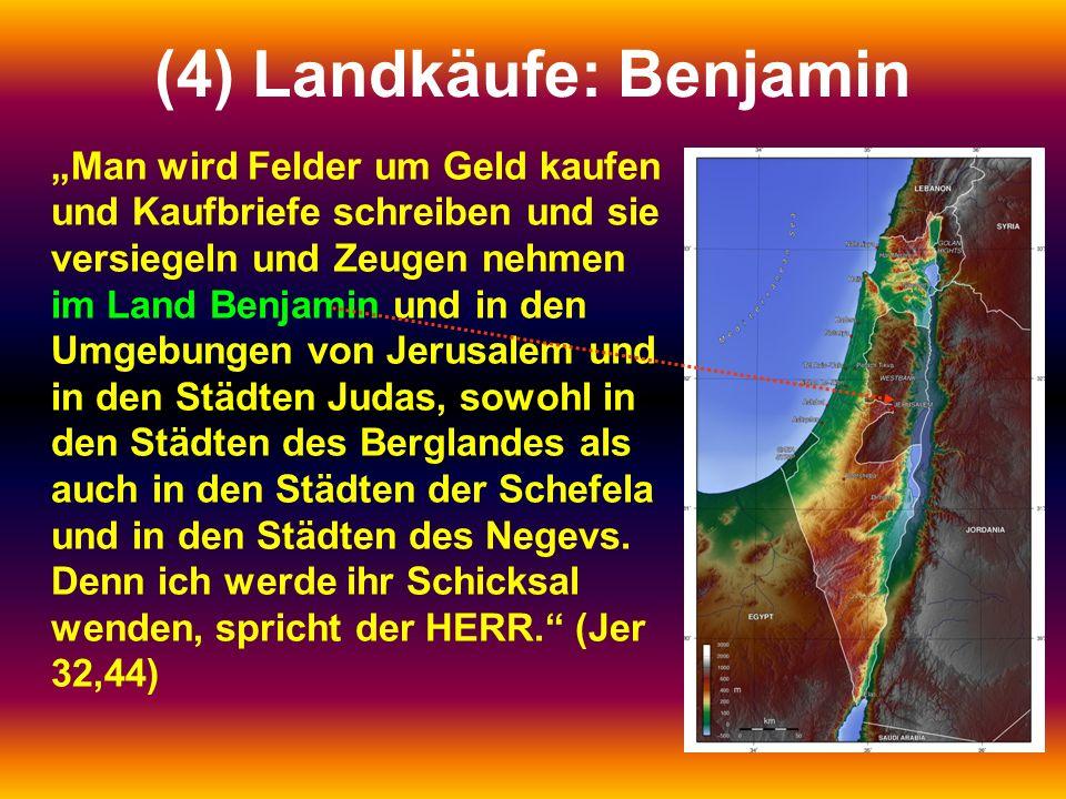 (4) Landkäufe: Benjamin