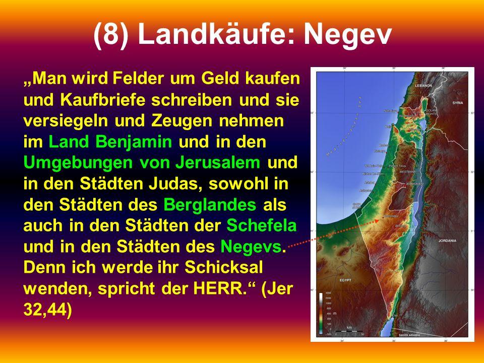 (8) Landkäufe: Negev