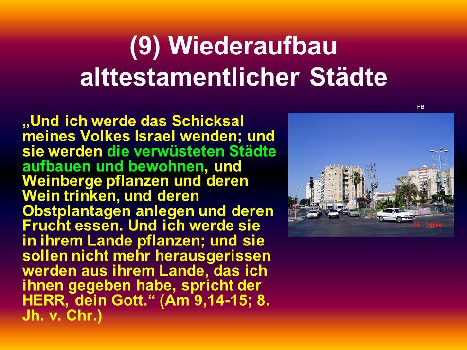 (9) Wiederaufbau alttestamentlicher Städte