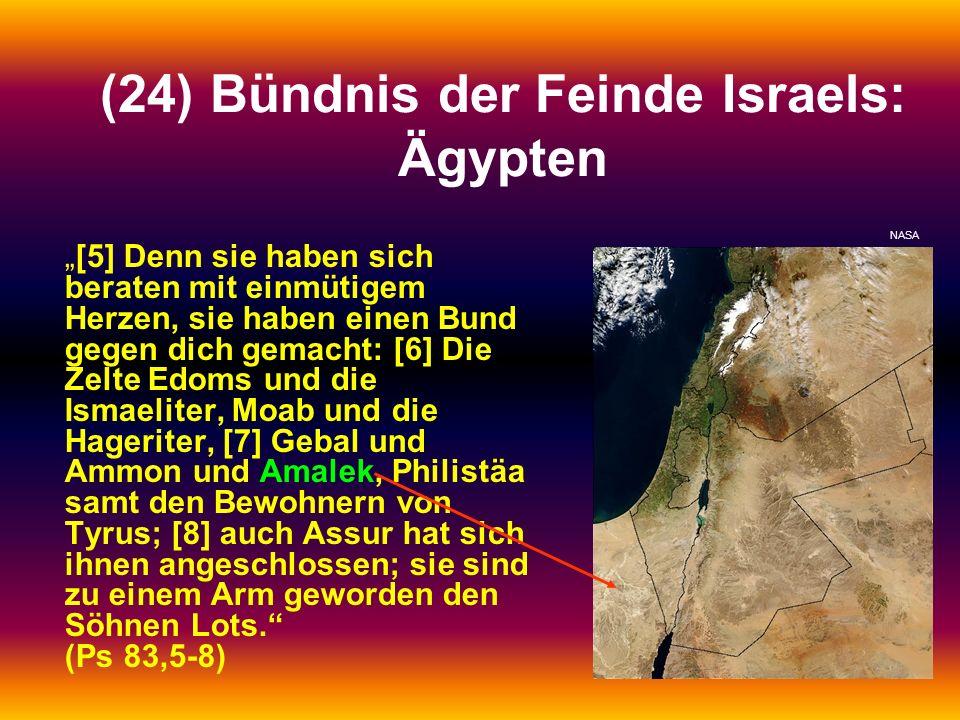 (24) Bündnis der Feinde Israels: Ägypten
