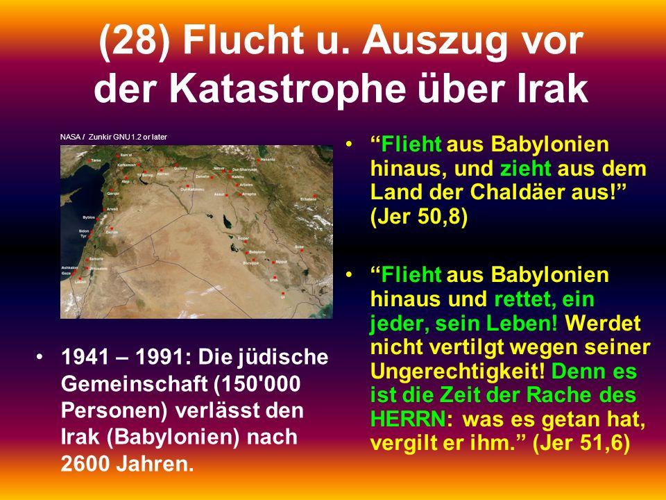 (28) Flucht u. Auszug vor der Katastrophe über Irak