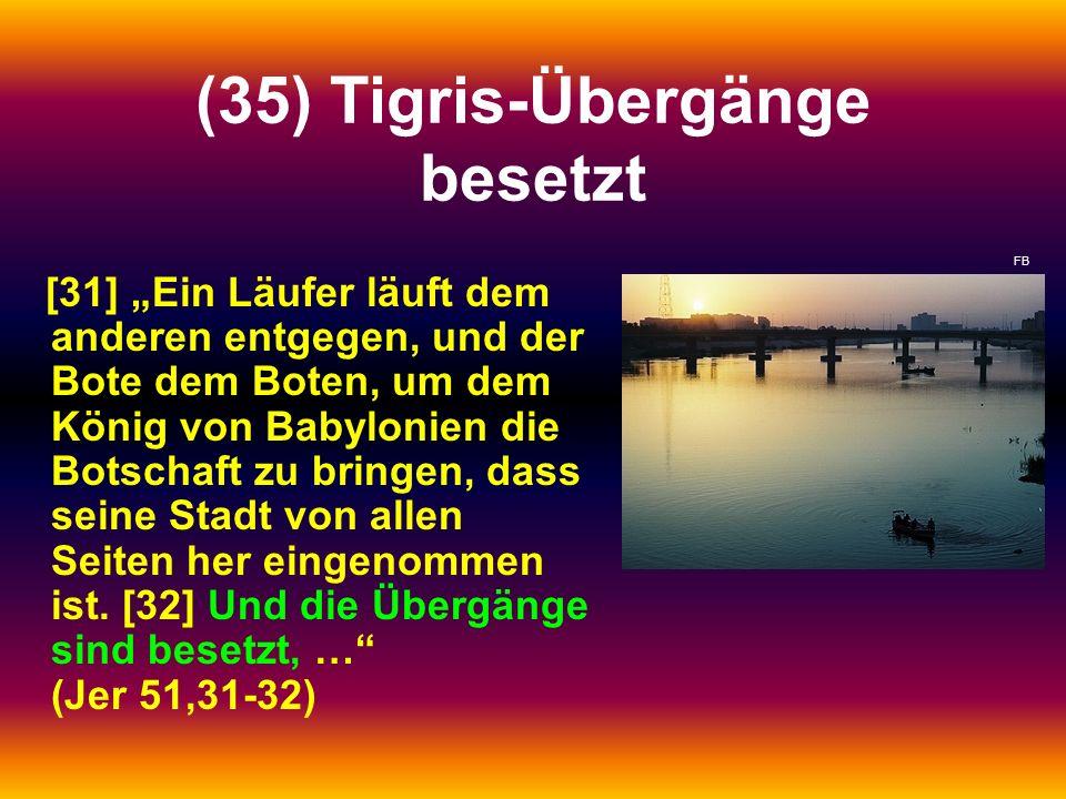 (35) Tigris-Übergänge besetzt