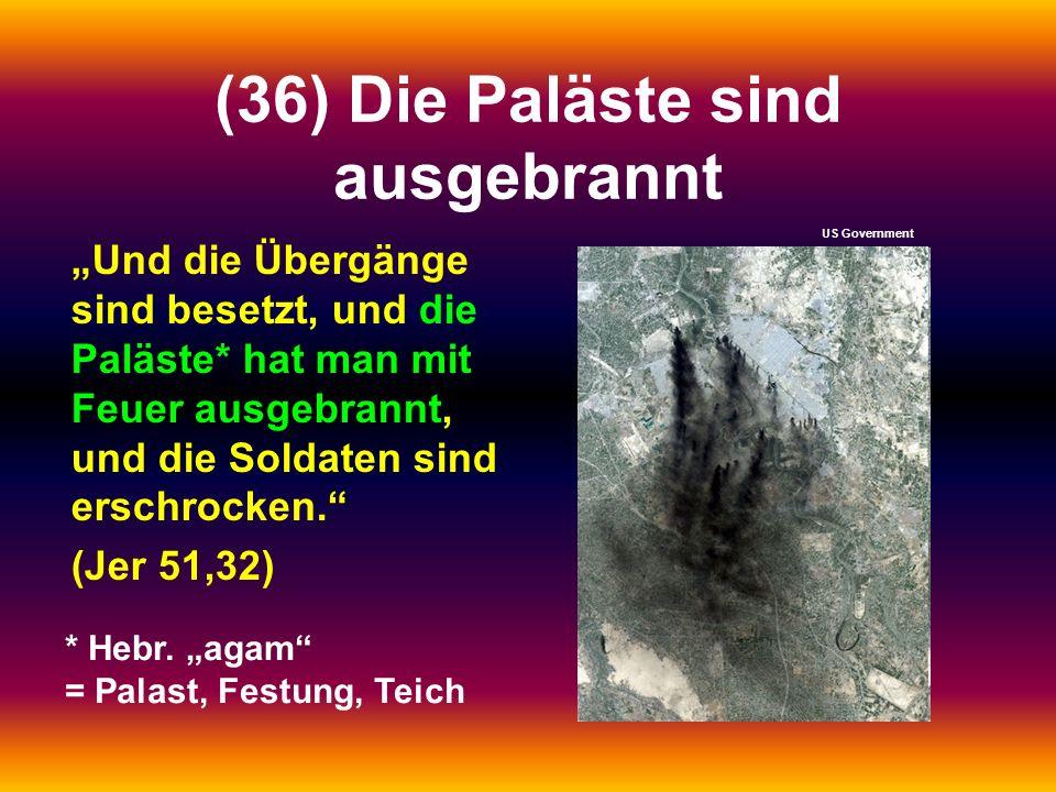 (36) Die Paläste sind ausgebrannt