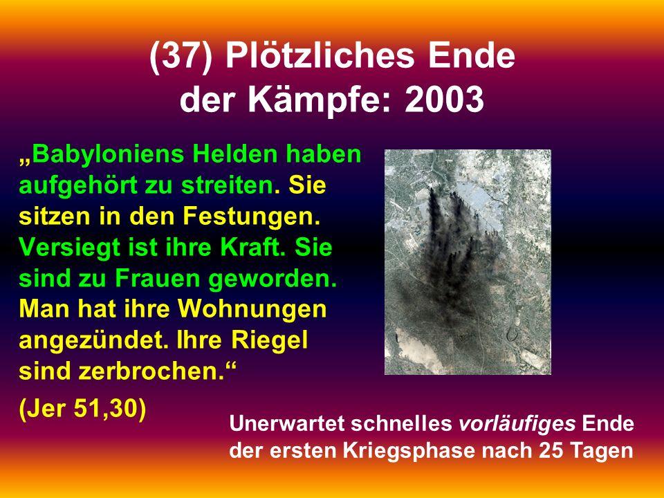 (37) Plötzliches Ende der Kämpfe: 2003