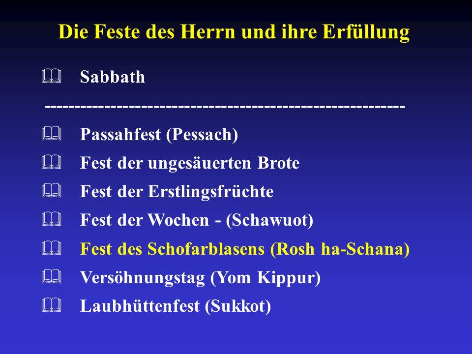 Die Feste des Herrn und ihre Erfüllung