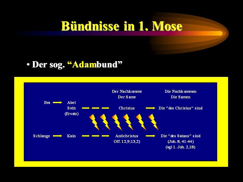 Bündnisse in 1. Mose Der sog. Adambund