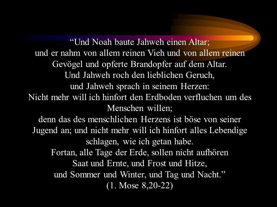 Und Noah baute Jahweh einen Altar; und er nahm von allem reinen Vieh und von allem reinen Gevögel und opferte Brandopfer auf dem Altar.