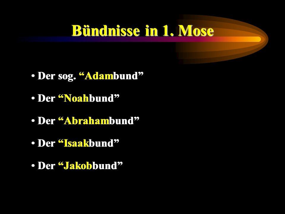 Bündnisse in 1. Mose Der sog. Adambund Der Noahbund