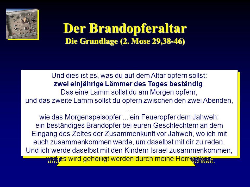 Der Brandopferaltar Die Grundlage (2. Mose 29,38-46)