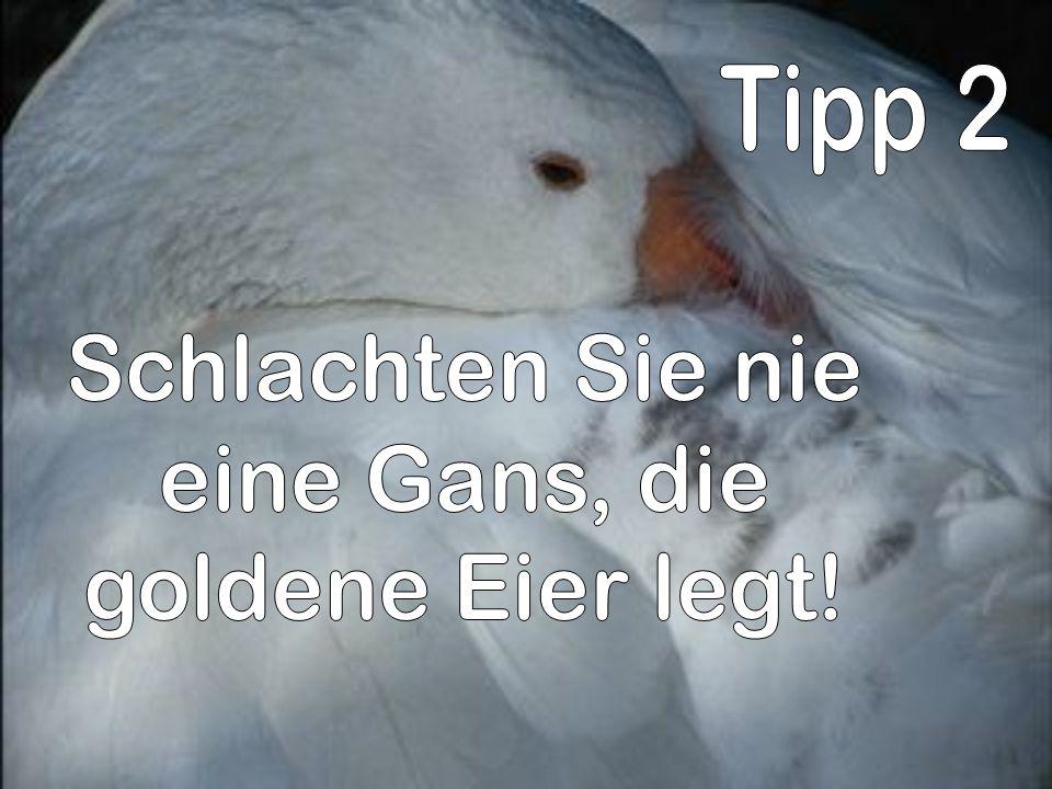 Tipp 2 Schlachten Sie nie eine Gans, die goldene Eier legt!