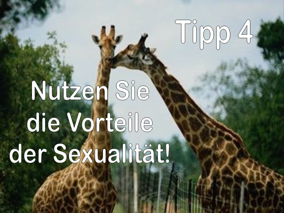 Tipp 4 Nutzen Sie die Vorteile der Sexualität!