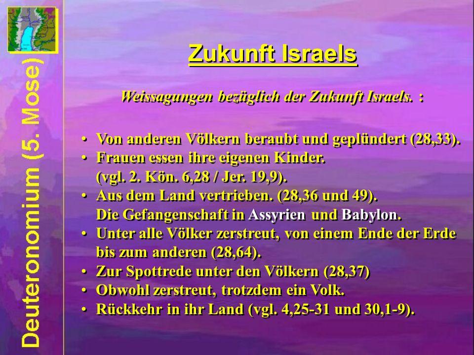 Weissagungen bezüglich der Zukunft Israels. :