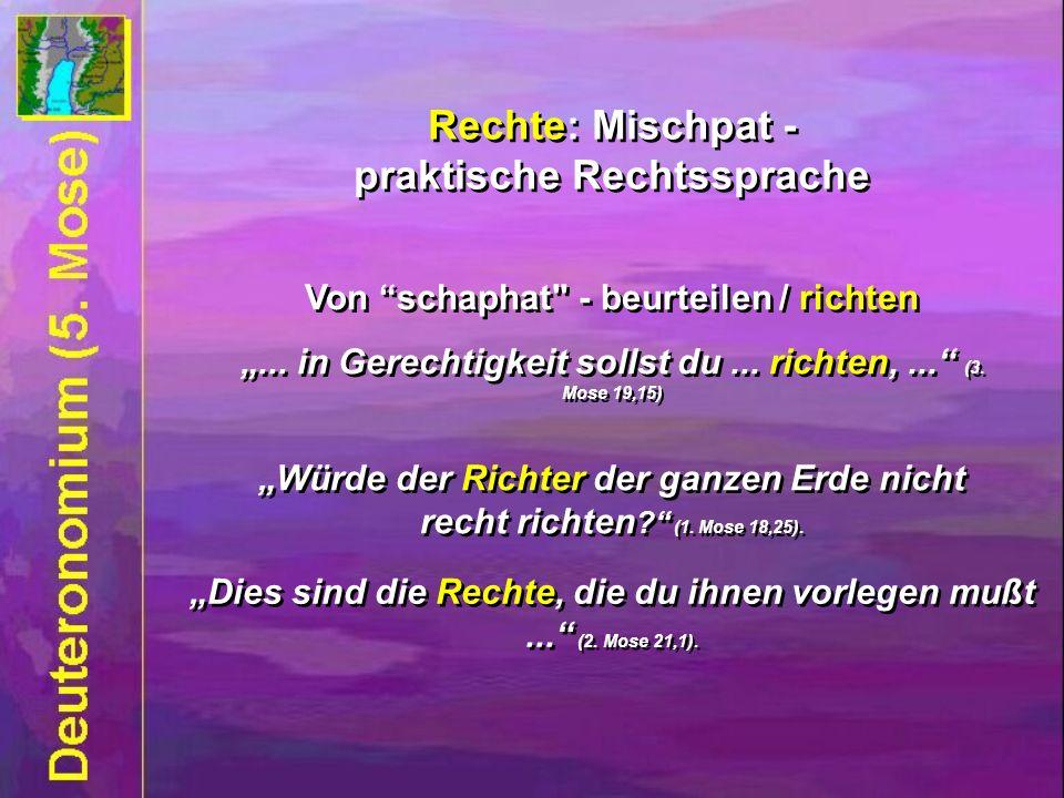 Rechte: Mischpat - praktische Rechtssprache