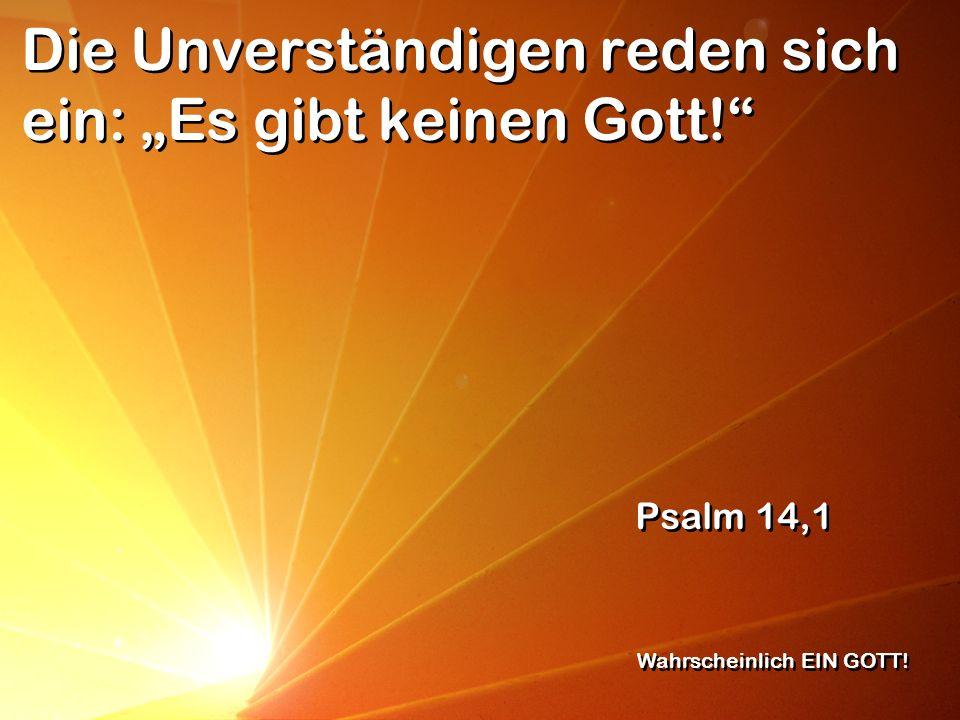 """Die Unverständigen reden sich ein: """"Es gibt keinen Gott!"""