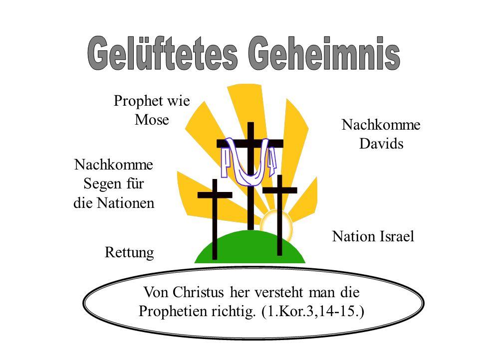 Gelüftetes Geheimnis Prophet wie Mose Nachkomme Davids
