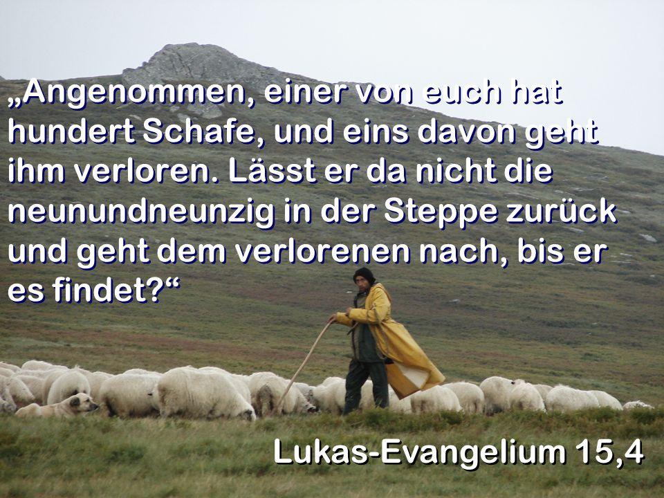 """""""Angenommen, einer von euch hat hundert Schafe, und eins davon geht ihm verloren. Lässt er da nicht die neunundneunzig in der Steppe zurück und geht dem verlorenen nach, bis er es findet"""
