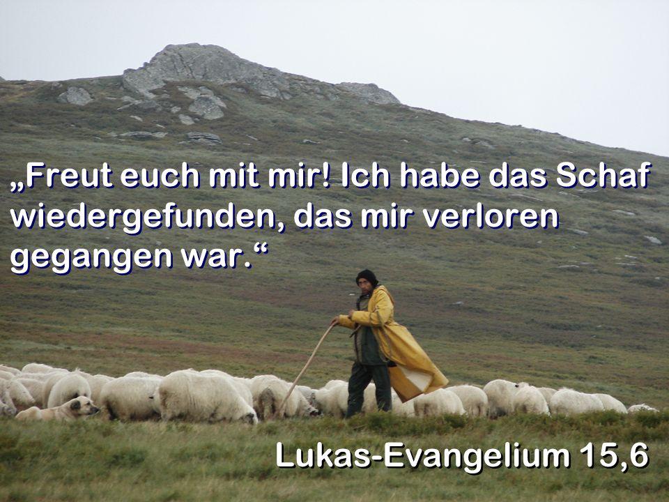 """""""Freut euch mit mir! Ich habe das Schaf wiedergefunden, das mir verloren gegangen war."""