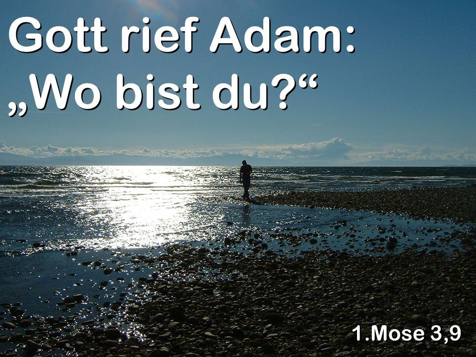 """Gott rief Adam: """"Wo bist du"""