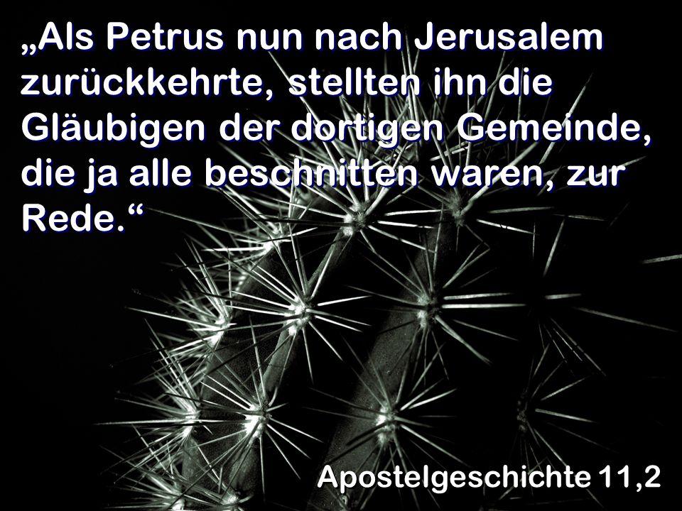 """""""Als Petrus nun nach Jerusalem zurückkehrte, stellten ihn die Gläubigen der dortigen Gemeinde, die ja alle beschnitten waren, zur Rede."""