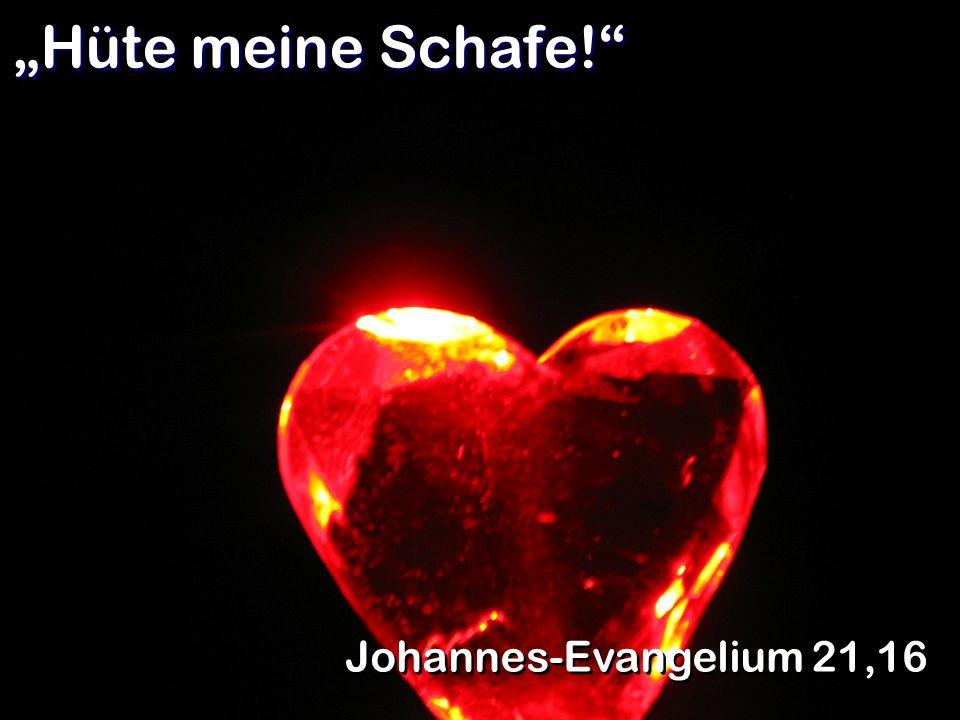 """""""Hüte meine Schafe! Johannes-Evangelium 21,16"""