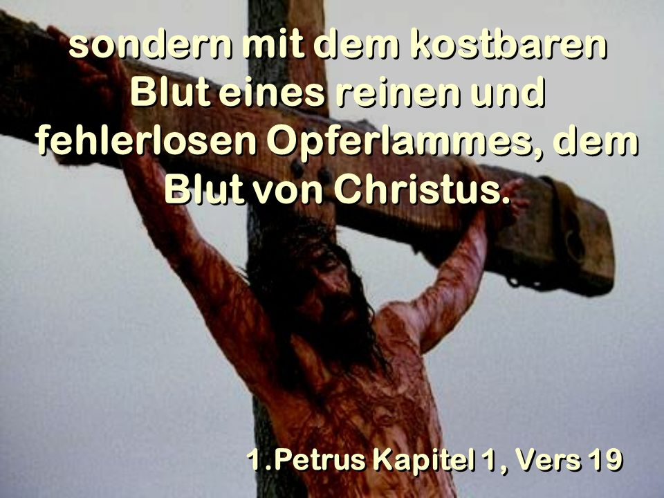 sondern mit dem kostbaren Blut eines reinen und fehlerlosen Opferlammes, dem Blut von Christus.