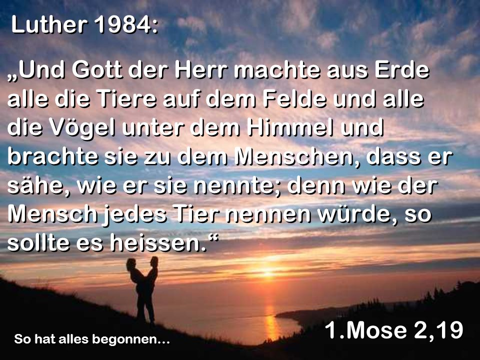 Luther 1984: