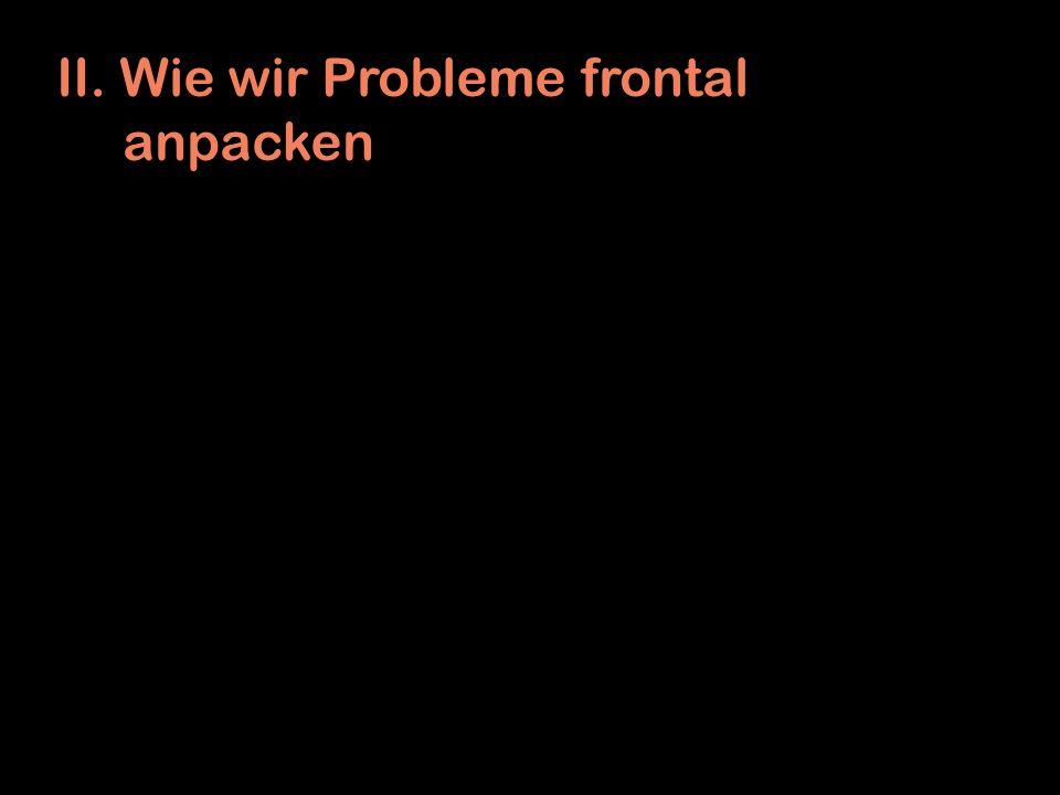 II. Wie wir Probleme frontal anpacken