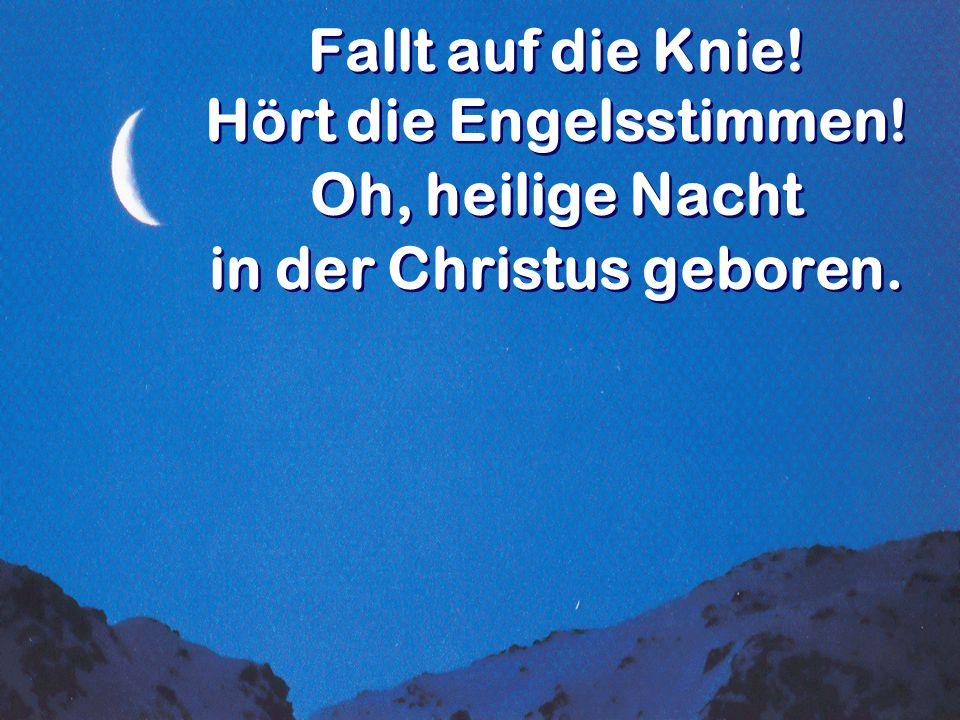 Fallt auf die Knie! Hört die Engelsstimmen! in der Christus geboren.