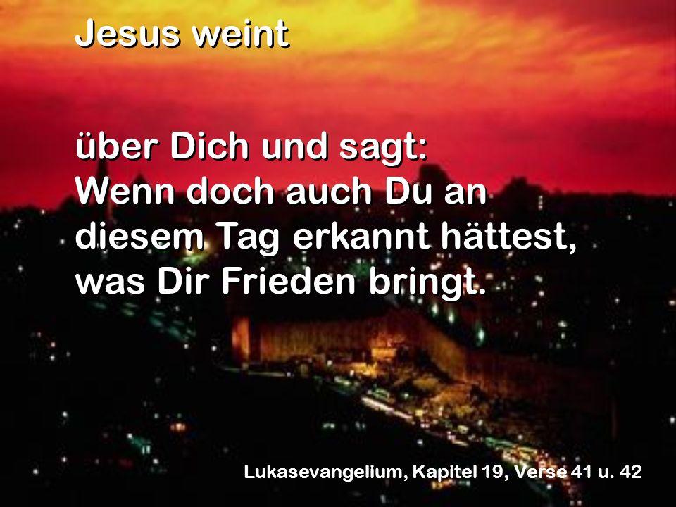Jesus weint über Dich und sagt: Wenn doch auch Du an diesem Tag erkannt hättest, was Dir Frieden bringt.