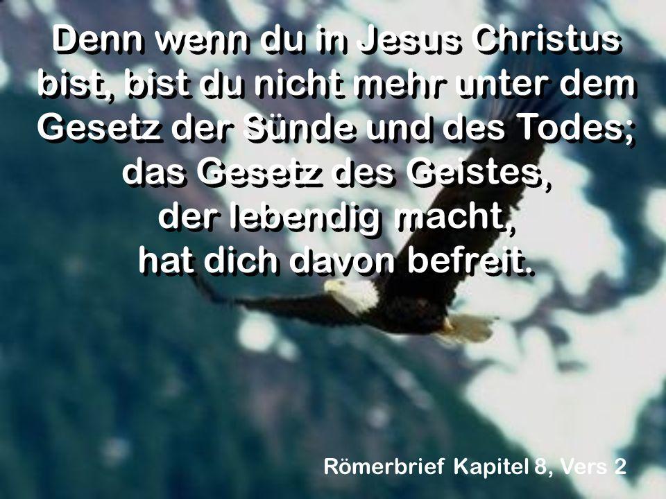 Denn wenn du in Jesus Christus bist, bist du nicht mehr unter dem Gesetz der Sünde und des Todes; das Gesetz des Geistes, der lebendig macht, hat dich davon befreit.