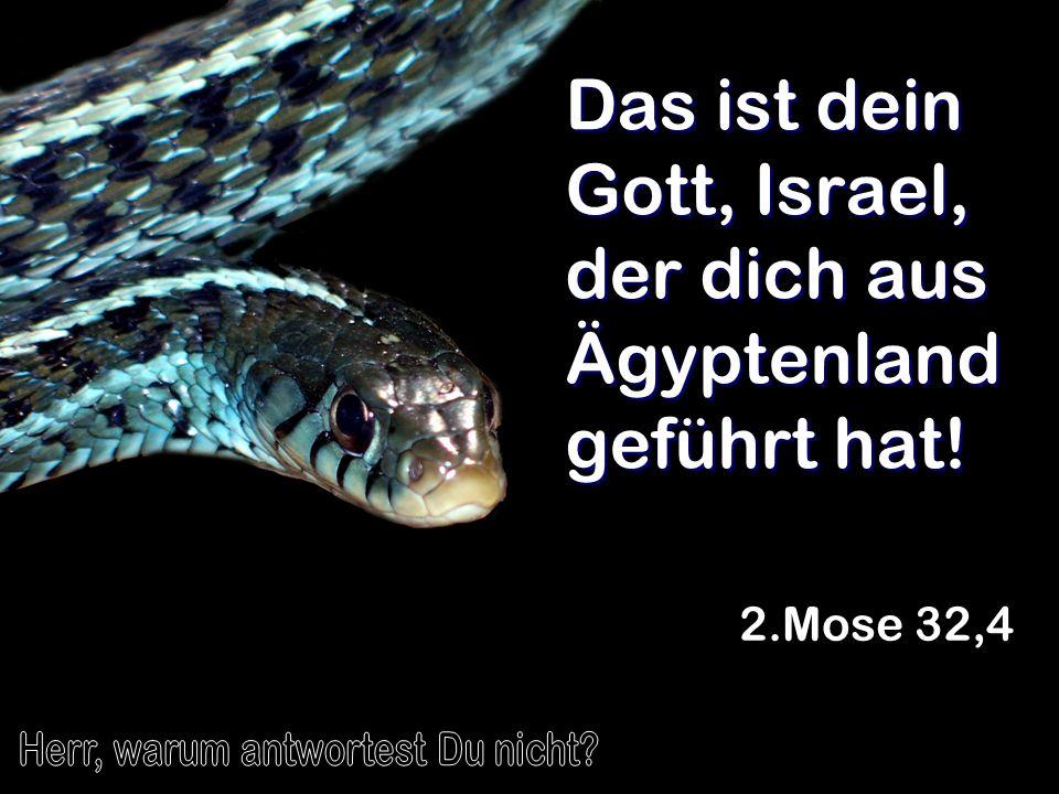 Das ist dein Gott, Israel, der dich aus Ägyptenland geführt hat!
