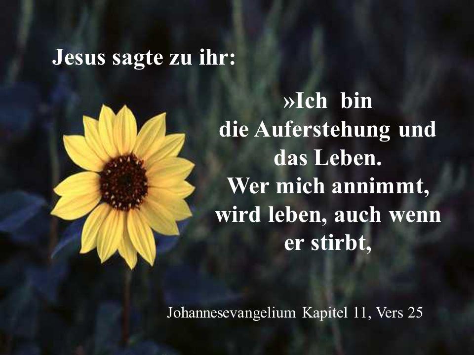 Jesus sagte zu ihr: »Ich bin die Auferstehung und das Leben. Wer mich annimmt, wird leben, auch wenn er stirbt,