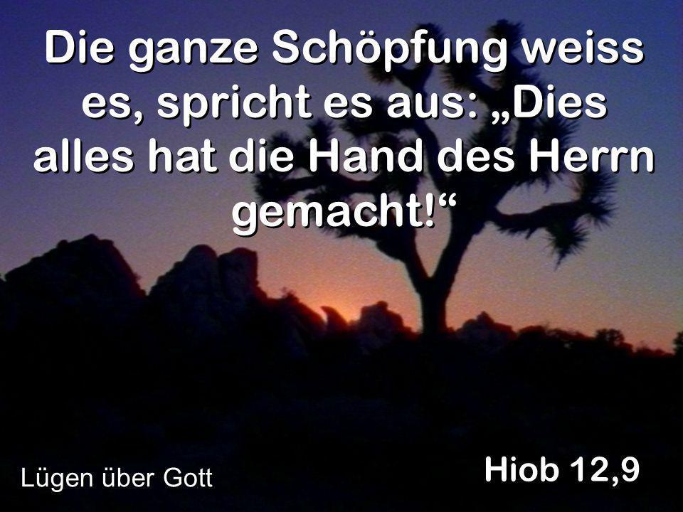 """Die ganze Schöpfung weiss es, spricht es aus: """"Dies alles hat die Hand des Herrn gemacht!"""