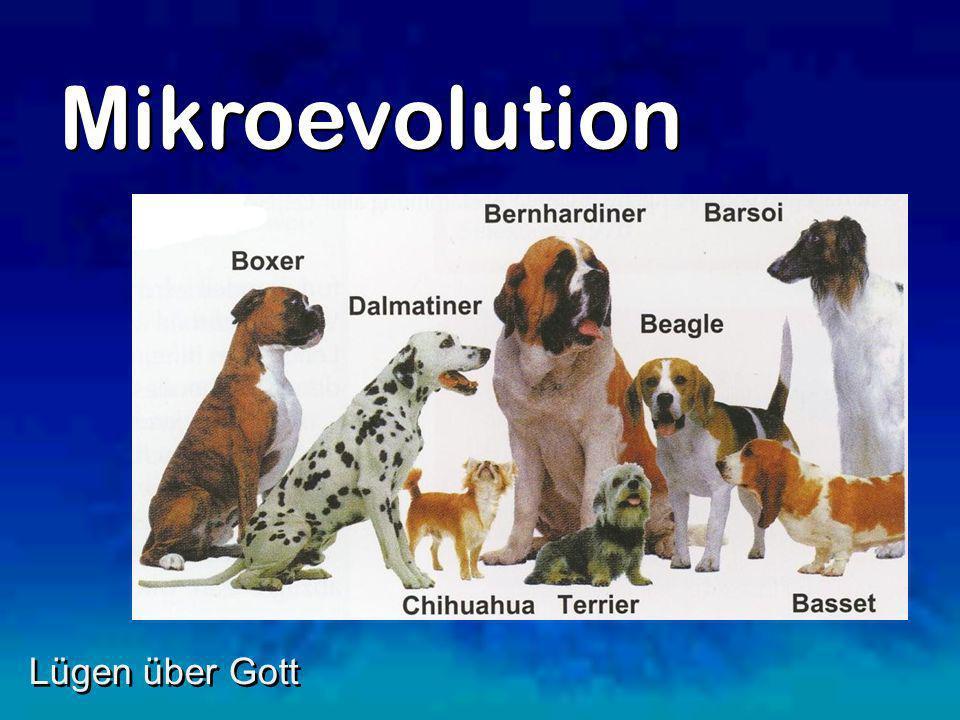 Mikroevolution Lügen über Gott