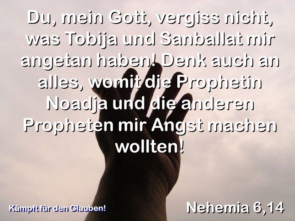 Du, mein Gott, vergiss nicht, was Tobija und Sanballat mir angetan haben! Denk auch an alles, womit die Prophetin Noadja und die anderen Propheten mir Angst machen wollten!