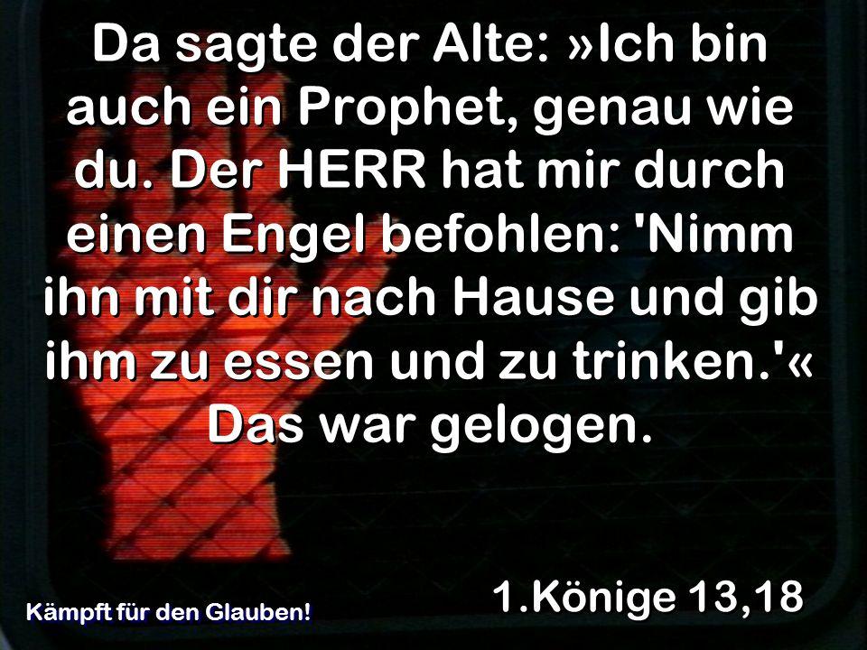 Da sagte der Alte: »Ich bin auch ein Prophet, genau wie du