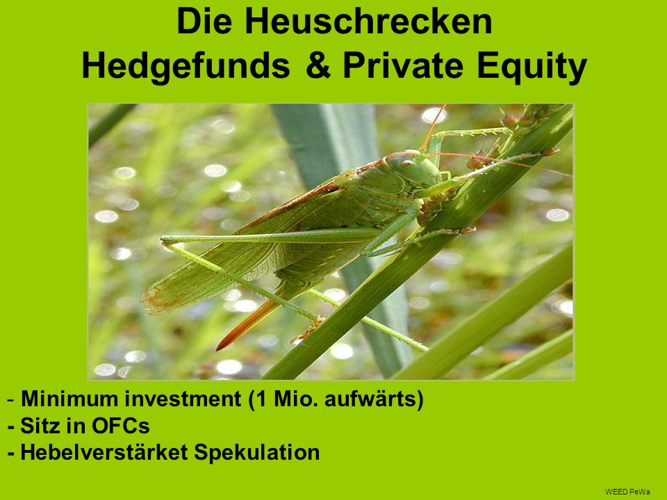 Die Heuschrecken Hedgefunds & Private Equity