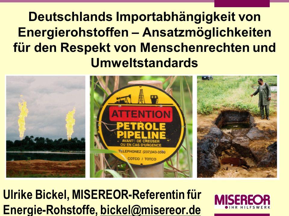 Deutschlands Importabhängigkeit von Energierohstoffen – Ansatzmöglichkeiten für den Respekt von Menschenrechten und Umweltstandards