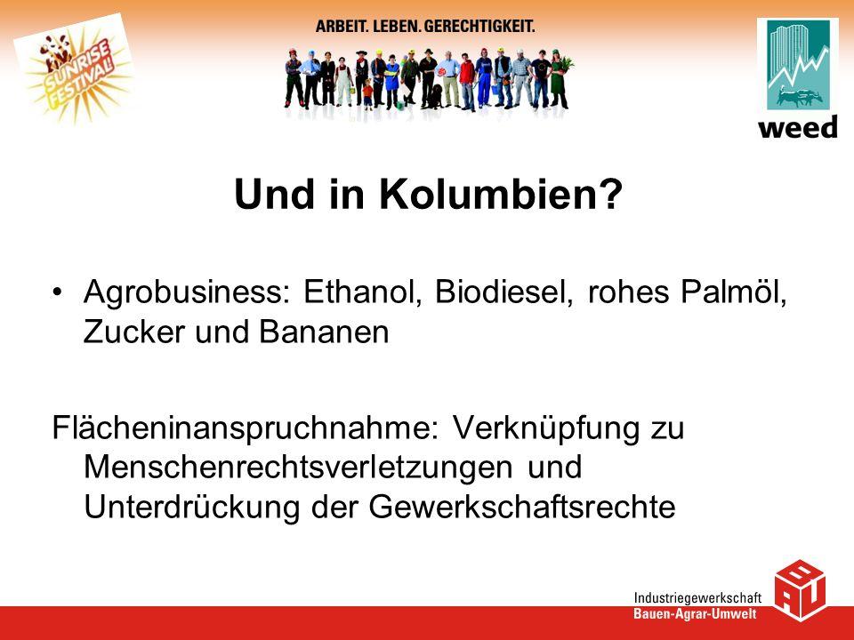 Und in Kolumbien Agrobusiness: Ethanol, Biodiesel, rohes Palmöl, Zucker und Bananen.