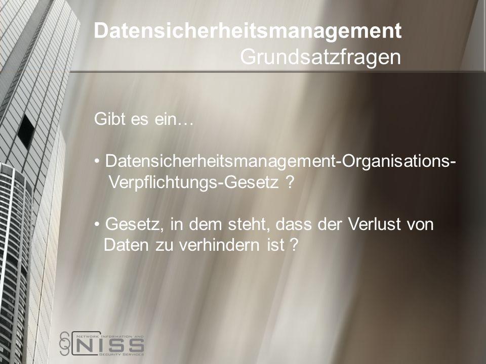 Datensicherheitsmanagement Grundsatzfragen