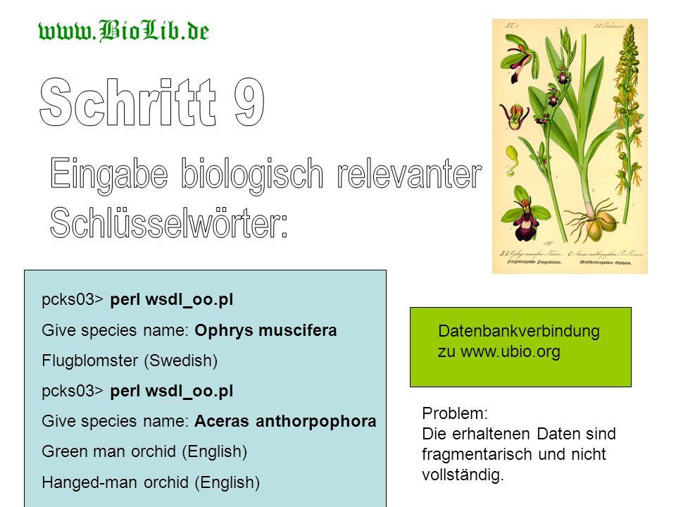 Schritt 9 Eingabe biologisch relevanter Schlüsselwörter: