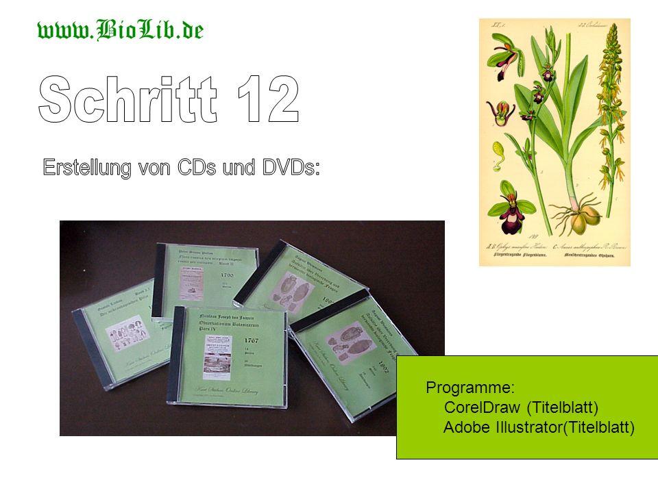 Erstellung von CDs und DVDs: