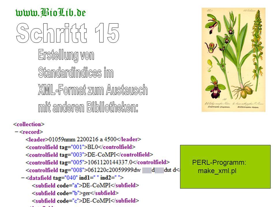 Schritt 15 Erstellung von Standardindices im XML-Format zum Austausch