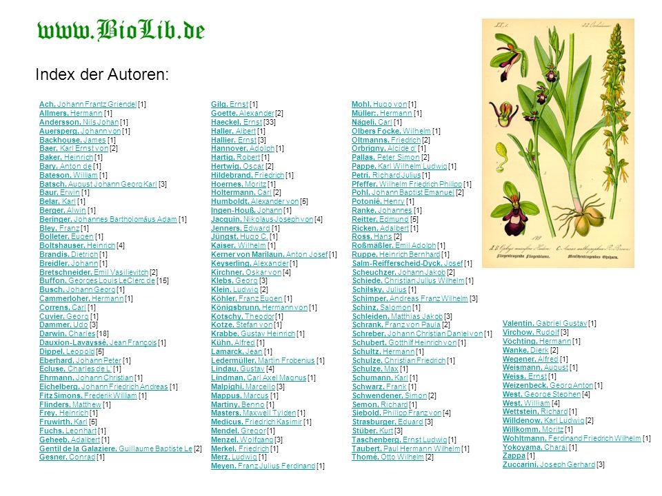 Index der Autoren:
